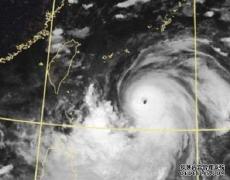 """台风""""利奇马""""过境后,北奔"""
